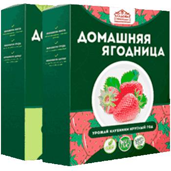 Домашняя ягодница