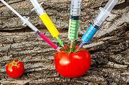 В составе Акнелоцина только натуральные компоненты