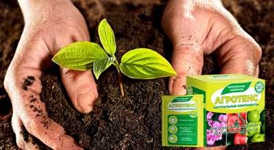 Удобрение Агротенс для урожайности.