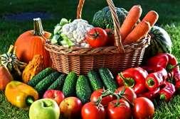 С удобрением Агромастер повышается урожайность.